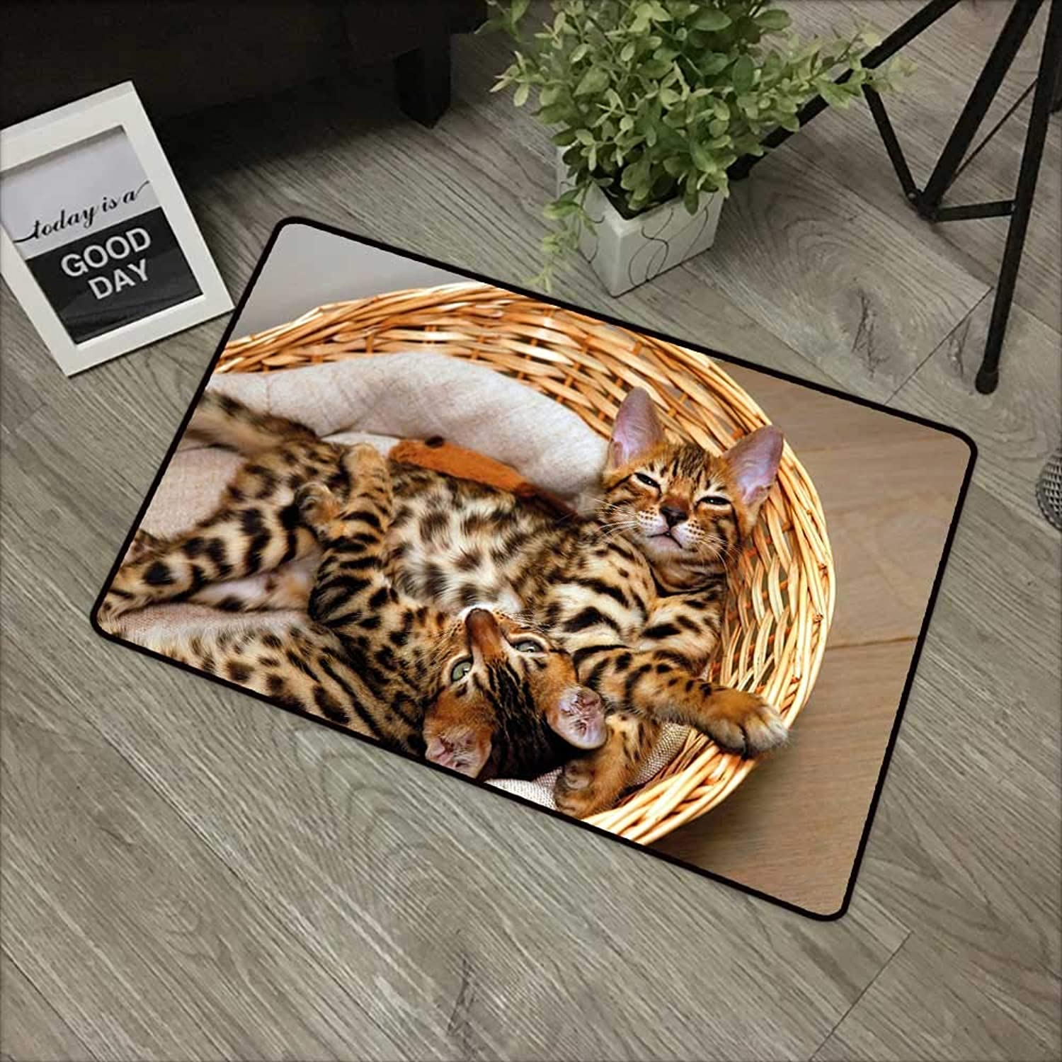 Pool Anti-Slip Door mat W35 x L59 INCH Kitten,Little Bengal Cats in Basket Cuddly Purebred Kitties Domestic Feline,Brown Light Brown Beige Non-Slip Door Mat Carpet