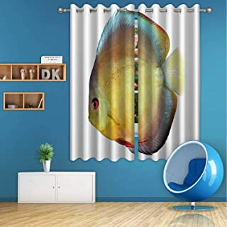 ALUONI Discus Digital Art Print Polyester Window Curtains,179739 for Bedroom,55 in Wide x 45 in high