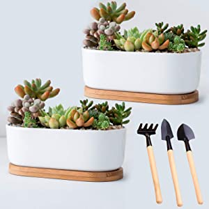 Garden Ceramic White Flower Plant Pot, Succulent Plant Pots with Bamboo Tray/Container/Planter with 3Peices Garden Tool