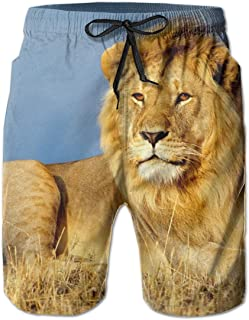 ライオンキングオブビースト嘘見てたてがみメンズ夏の水泳パンツ3Dグラフィッククイックドライおかしいビーチボードショーツ付きメッシュ裏地