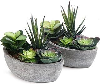 ComSaf Cactus Artificial Talla Pequeña Plásticas Paquete de 2, Decorativas Suculentas Plantas Artificiales Decoración para Mesa de Comedor Sala de Estar Idea Regalo para Cumpleaños Boda Navidad