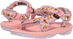 dd7510e52520 Teva Kids Sandals + FREE SHIPPING