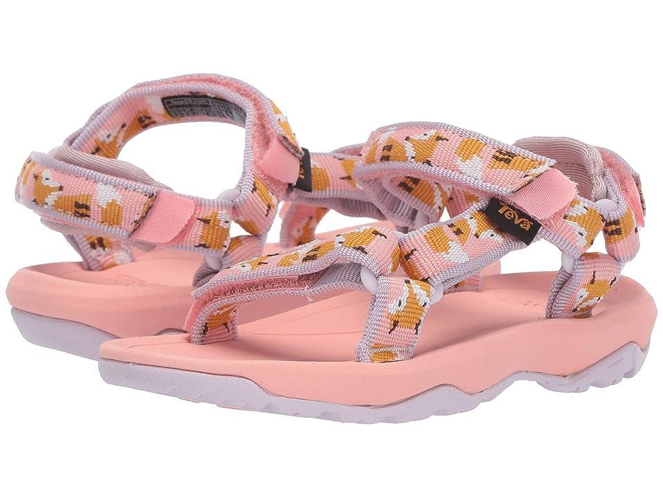 Teva Kids Hurricane XLT 2 (Toddler) (Fox Orchid Pink) Girls Shoes