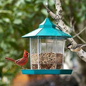 HARXING Wild Bird Feeder, Panorama Bird Feeder Hanging for Garden Yard Outside Decoration (Green)