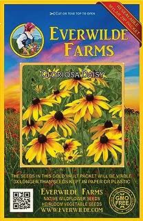Everwilde Farms - 2000 Gloriosa Daisy Native Wildflower Seeds - Gold Vault Jumbo Seed Packet