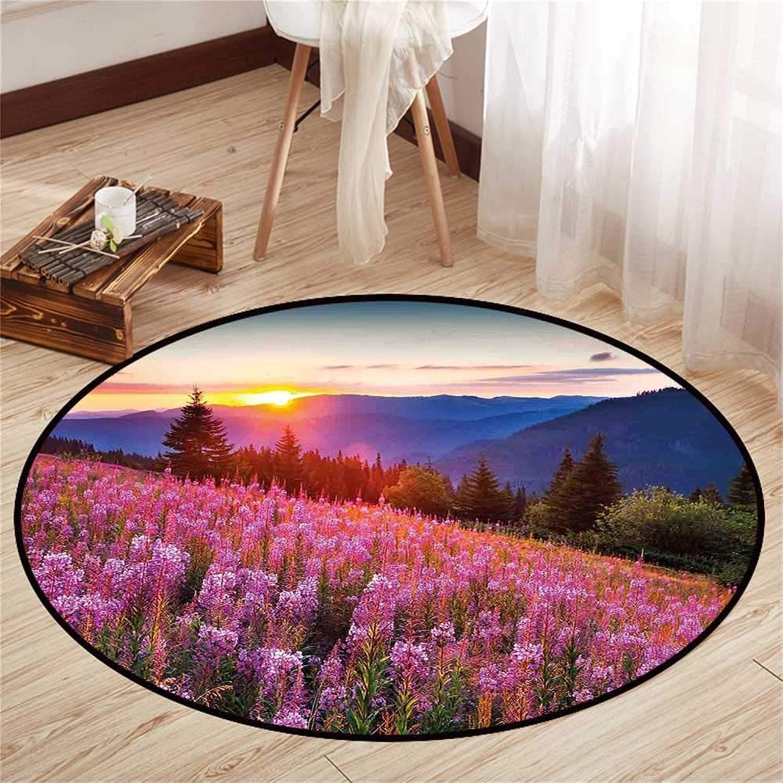 Circularity mat Anti Slip pad Round Indoor Floor mat Entrance Circle Floor mat for Office Chair Wood Floor Circle Floor mat Office Round mat for Living Room Pattern 4'3  Diameter