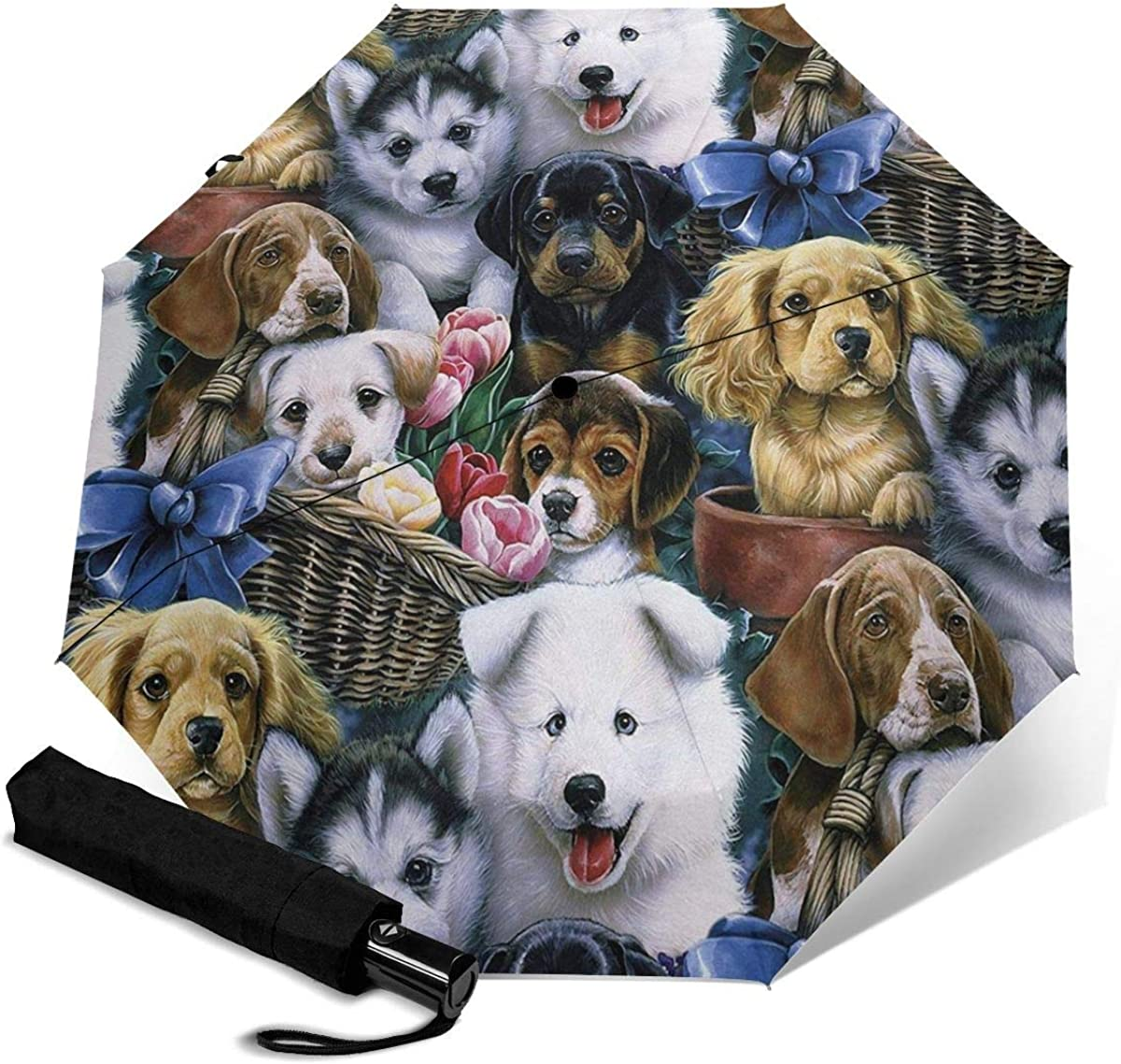 Puppies Puppy Dog Faces quality assurance Umbrellas for Sale price Auto rain Color-Changing U