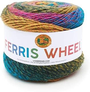 Lion Brand Yarn 217-601 Ferris Wheel Yarn, Summer Day