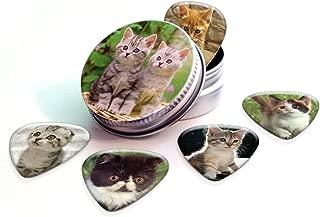 Kittens (Cats) Premium Guitar Picks x 5 With Tin