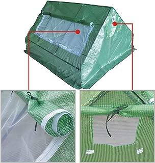 BenefitUSA Outdoor Garden Green House Walk in Greenhouse Canopy Gazebo (6'X5'X3', Green)