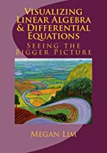 Visualizing Linear Algebra and Differential Equations: The Guide to Seeing the Bigger Picture