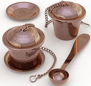 Loose Leaf Tea Infuser (Set of 2) with Tea Scoop and Drip...