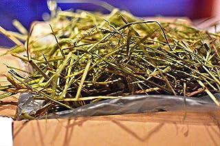 業務用【30年度産新刈り】スーパープレミアムチモシー 1番狩り ダブルプレス (うさぎ モルモット チンチラ などの草食動物の牧草) (1kg)