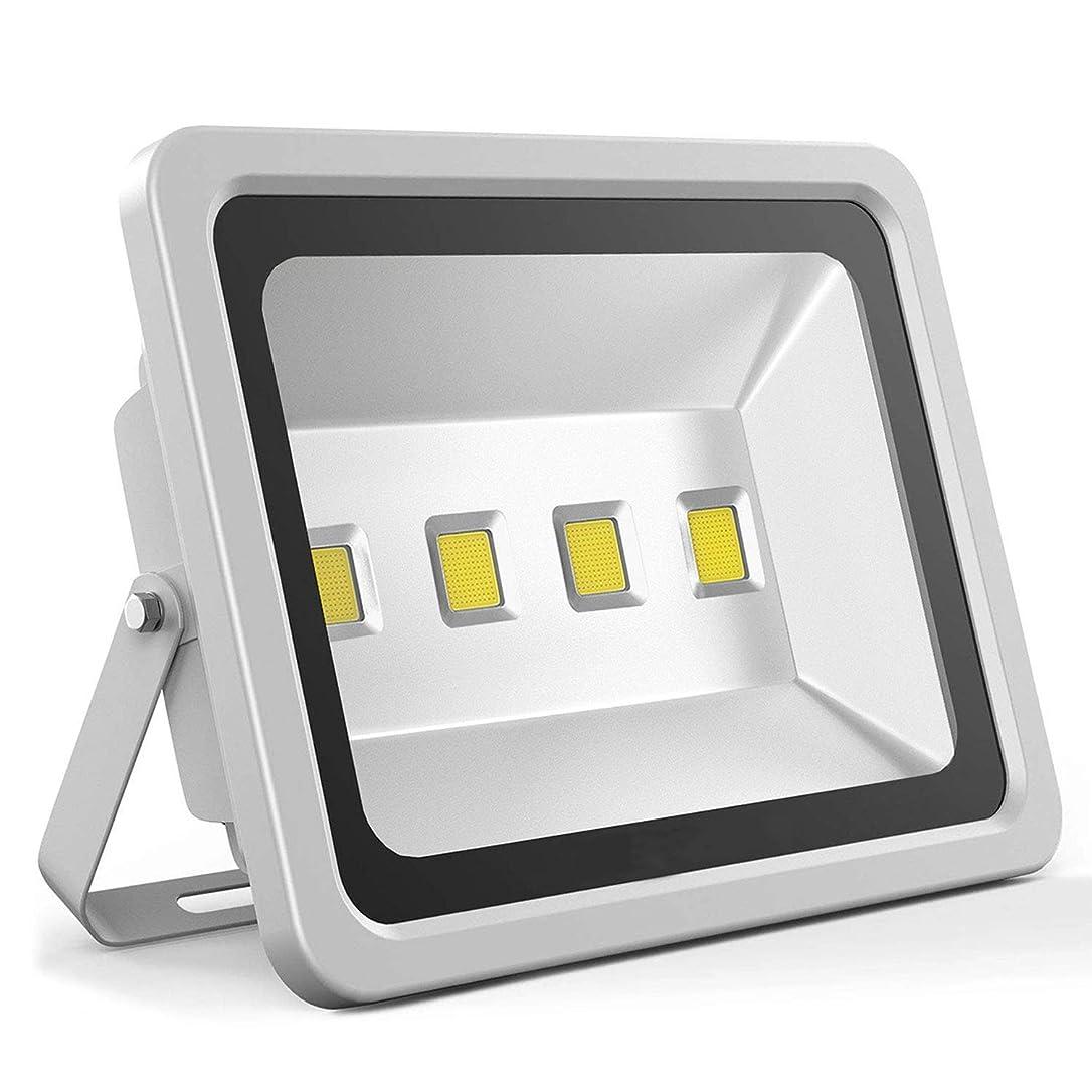 趣味昆虫を見る池JLCN LED投光器 フラッドライト屋外照明 作業灯セキュリティライト明るい昼白色セキュリティフラッドランプ防水IP65の駐車場ライト