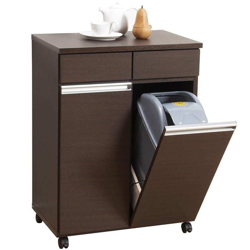 消す隙間限定クロシオ ダイニングダストボックス2D ブラウン 約幅55cm 2分別ゴミ箱 ごみ箱
