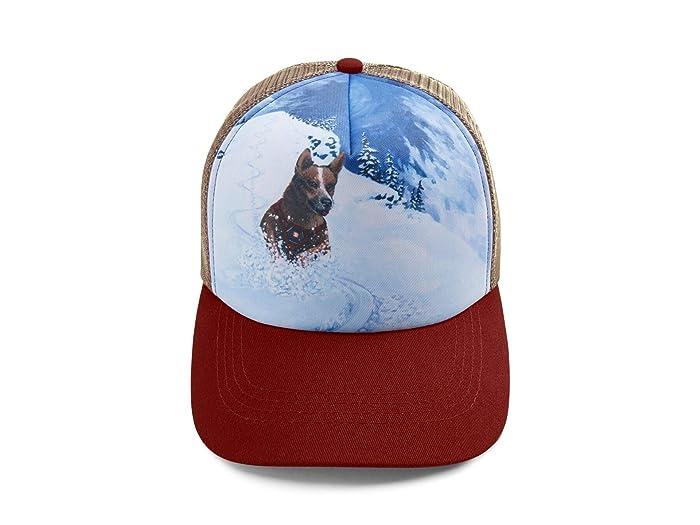 Artist Series Hat (Mount Bailey) Dog Accessories