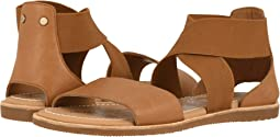 Camel Brown 1