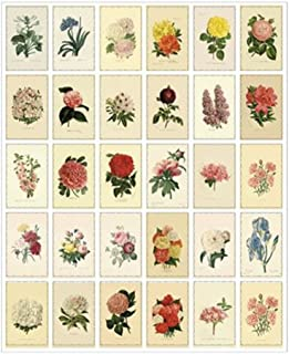 Vintage Flowers and Plants Theme Postcard Set 30 Cards DIY Postcards Gift Message Card Paper Bookmark Greeting Card