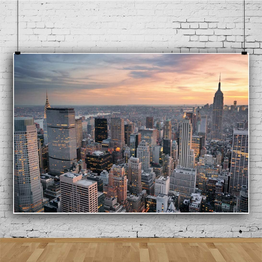 Cityscape 1 Backdrop on Glare Free Vinyl 7/' wide by 5/' tall