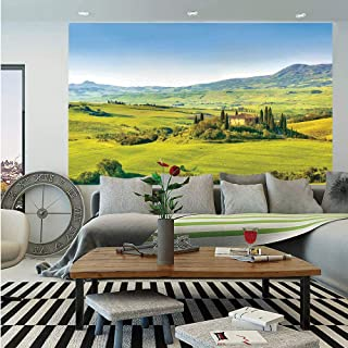 SoSung Tuscan Wall Mural,Rural Landscape Cypresses Along The Path to Ancient Vineyard Farm House,Self-Adhesive Large Wallpaper for Home Decor 55x78 inches,Green and Light Blue