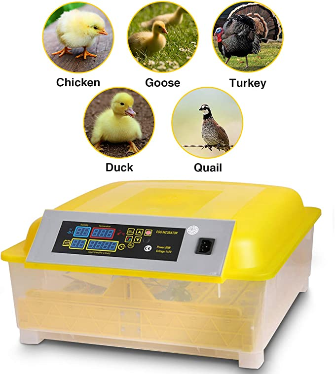 Patio, Lawn & Garden Poultry Habitat Supplies OppsDecor Egg ...