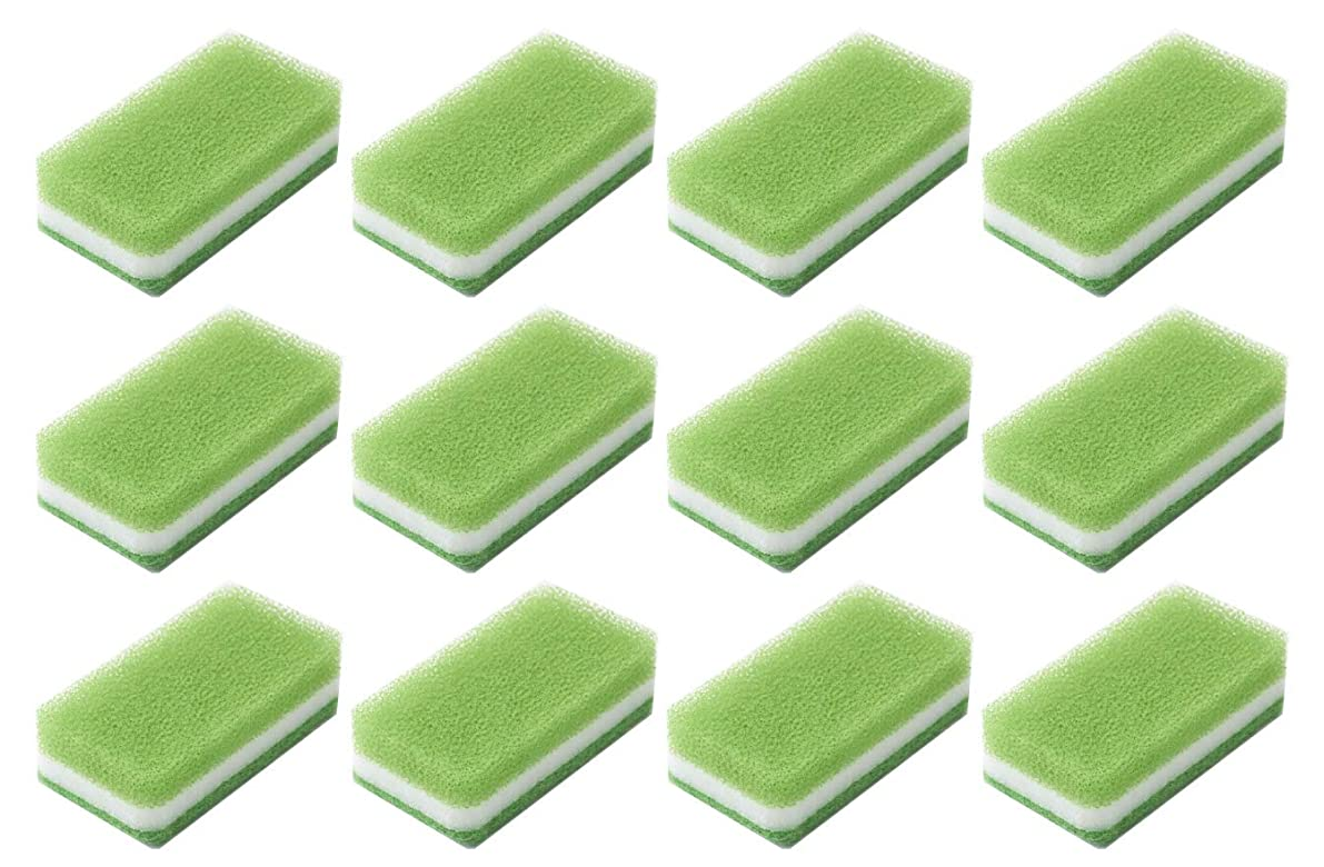 きちんとした美容師欺くダスキン スポンジ 抗菌タイプ (台所用) 12個入り 台所 キッチン用 キッチンスポンジ 油汚れ 長持ち (1個×12) (ライトグリーン)