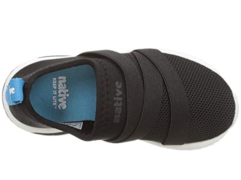 4bd94bf7400b Native Kids Shoes Phoenix (Toddler Little Kid) at Zappos.com