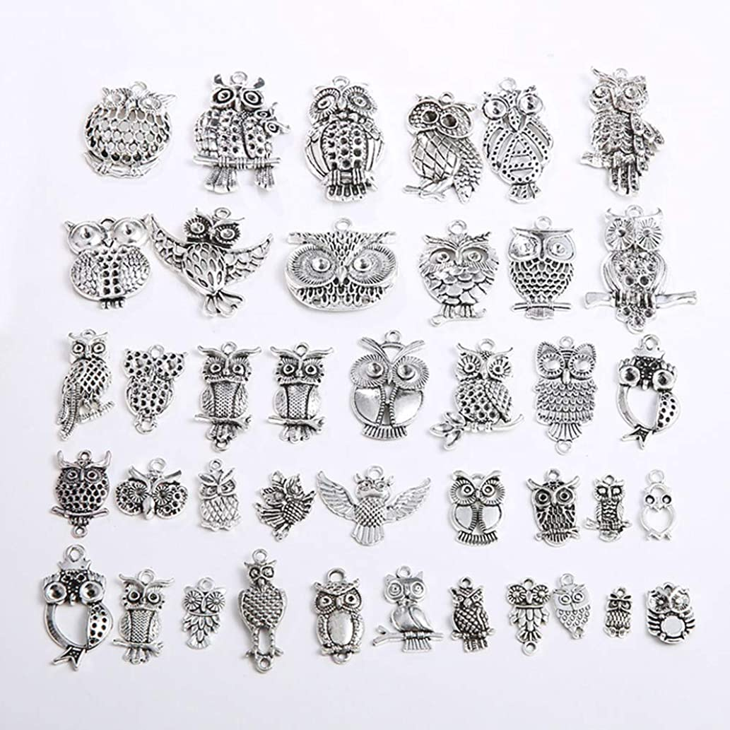 100g (About 40 pcs) Craft Supplies Owl Charms Pendants for Crafting, Jewelry Findings Making Accessory for DIY Necklace Bracelet (Mixed owl Charms)