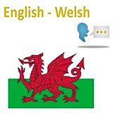 Traduttore welsh