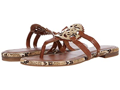 Circus by Sam Edelman Canyon 9 (Saddle) Women