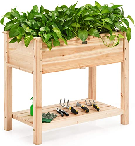 popular Giantex Raised outlet online sale Garden Bed, discount Elevated Wood Planter Box Stand, Planter Garden Grow Box Kit W/Legs for Vegetable Flower Herb, Outdoor Planter Box W/Shelf for Garden Patio Backyard Natural sale