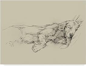 Trademark Fine Art Dog Days III by Ethan Harper, 24x32