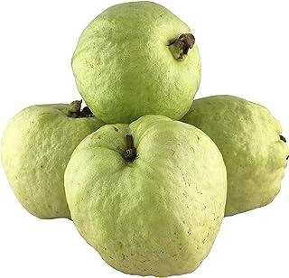 Global Seasons Seedless Guavas, 4 Count