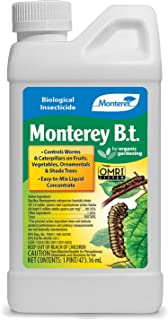 Monterey Bacillus Thuringiensis (B.t.) Worm & Caterpillar Killer Ready to Use Insecticide/Pesticide Treatment Spray