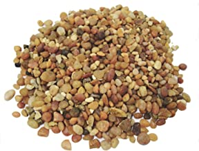 TerraGreen Creations - 1 lb - Washed Pea Gravel - Succulent Pebbles and Rocks for Plants - Planter and Fairy Garden. Great Fairy Garden Accessories
