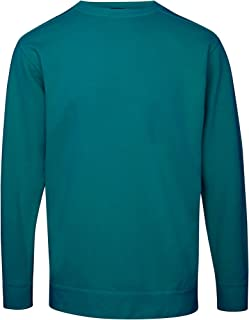 Adults Unisex Crew Neck Sweatshirt (L) (Topaz Blue)