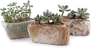 T4U Conjunto de 3 Forma de Piedra distintiva Cerámicos Planta Maceta Suculento Cactus Planta Maceta Planta Contenedor Vivero Maceta Macetas de jardín Macetas Envase