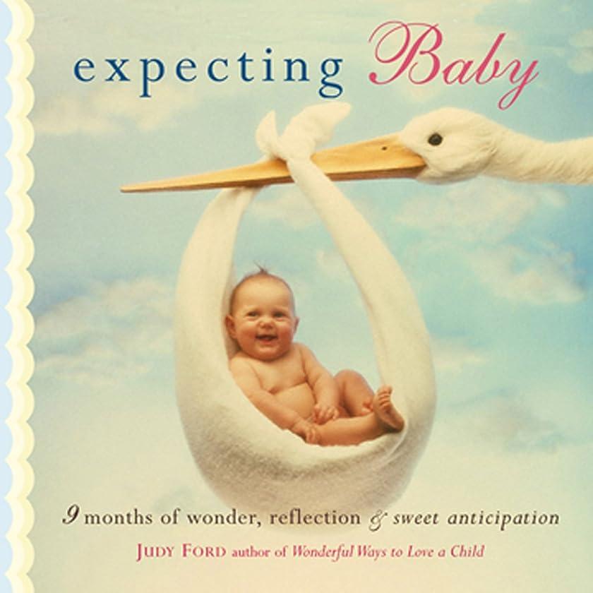 エアコン浴暫定のExpecting Baby: Nine Months of Wonder, Reflection and Sweet Anticipation (English Edition)