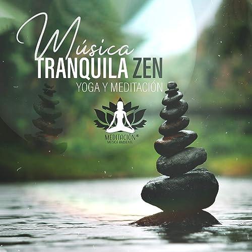 Amazon.com: Bienestar para Mí: Meditacion Música Ambiente ...