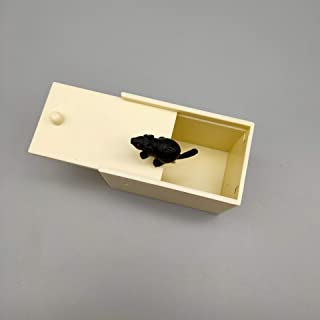 Spider Box Prank Toy Gift to Tease Pets and People All Fun Realistic Fake Spider Horror Toy Prank Model Plastic Box Mouse one Size