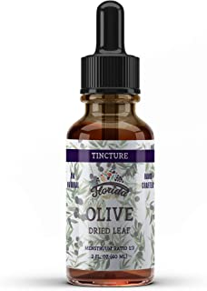 Organic Olive Leaf Tincture, Olive Extract Liquid (Olea europaea) Dried Leaf Herbal Supplement, Non-GMO in Cold-Pressed Or...