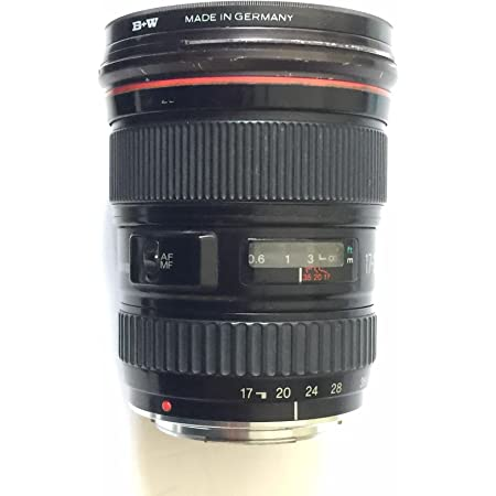 Canon Ef S 17 35 Mm F 2 8 L Usm Lens For Canon Camera Photo