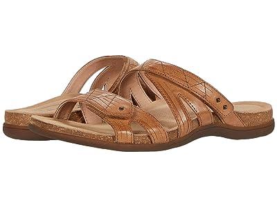 Taos Footwear Premier