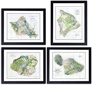 Hawaii Survey Maps - Unframed Wall Art Prints - Set of Four - Perfect Gift for Map Fans - Great Office or Home Decor - Ready to Frame (8X10) Vintage Photos