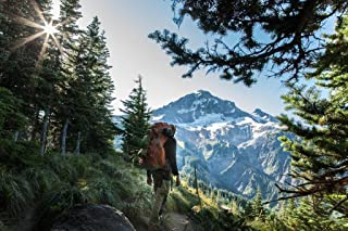 Hiking in Mount Hood National Forest Portland Photo Photograph Cool Wall Decor Art Print Poster 36x24