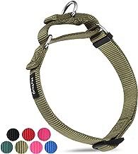 Hyhug Solid Color Martingale Nylon Dog Collar, Heavy Duty Anti-Escape- Medium-Hot Lime