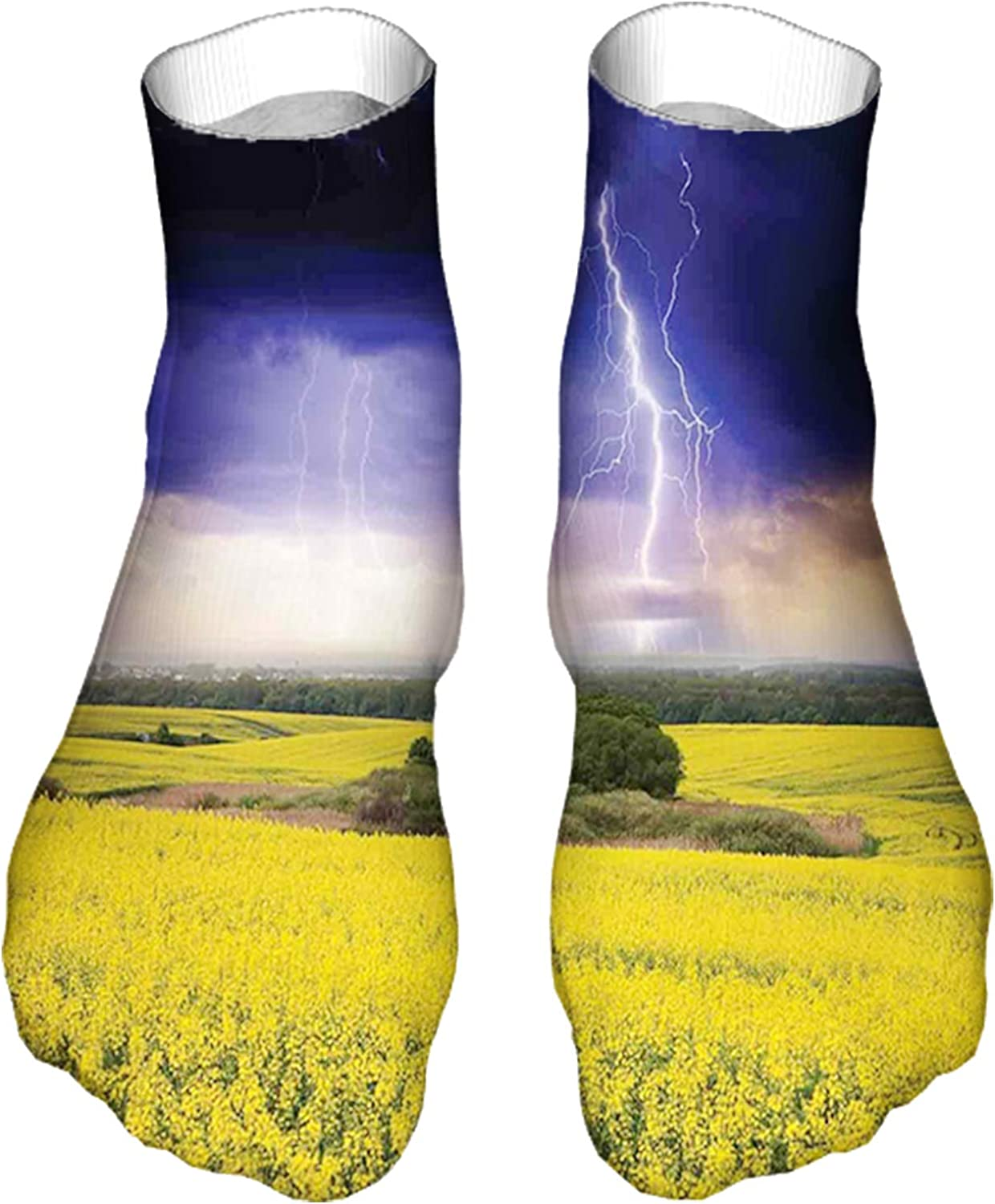 Women's Colorful Patterned Unisex Low Cut/No Show Socks,Majestic Summer Storm Just About to Start Blowing