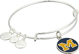 Color Infusion University of Michigan Logo II Bangle