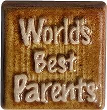 3D Fridge Magnet World's Best Parents Small Gift for Parents