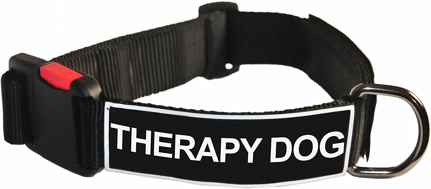 Dean and Tyler Patch Collar , Nylon Dog Collar with THERAPY DOG Patches  Black  Size  Large  Fits Neck 26Inch to 37Inch